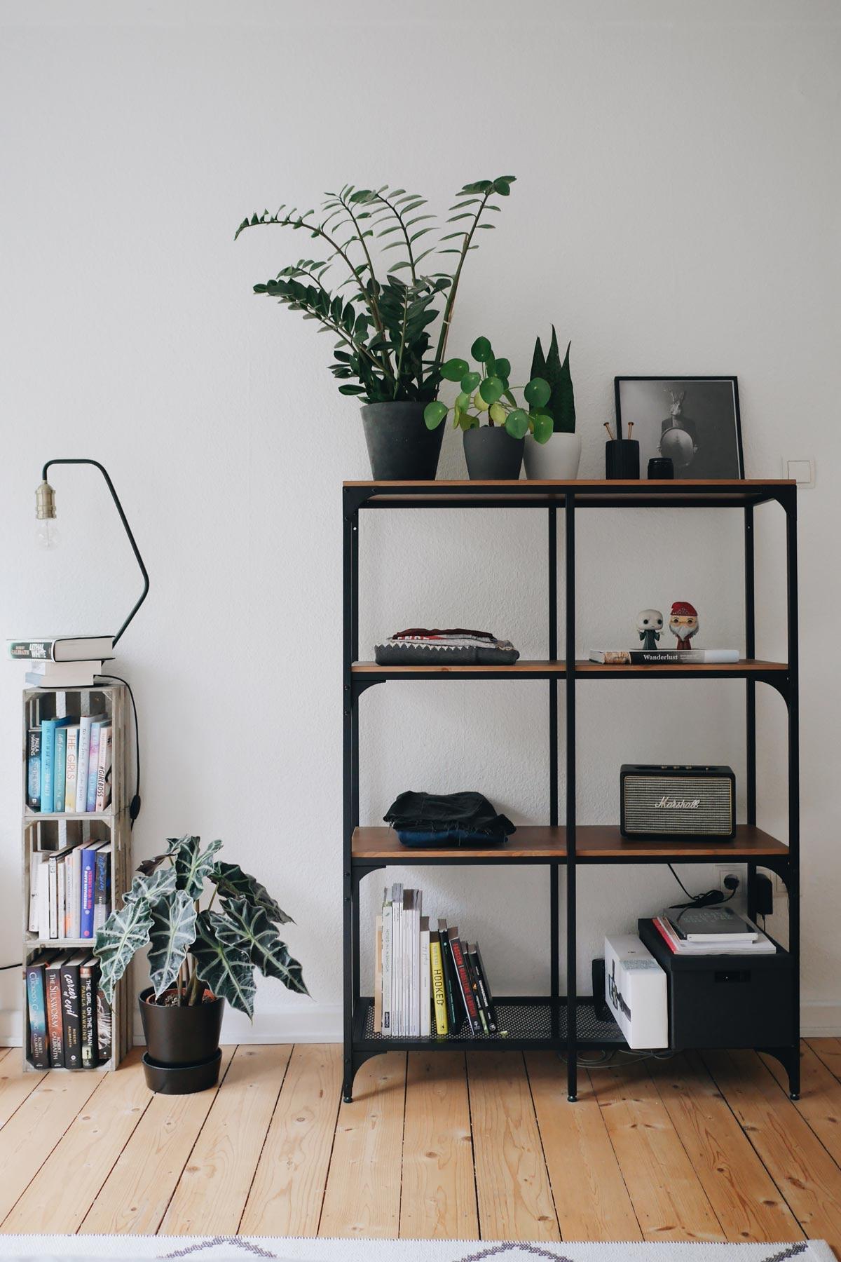 Regalkonzept Pflanzendisplay